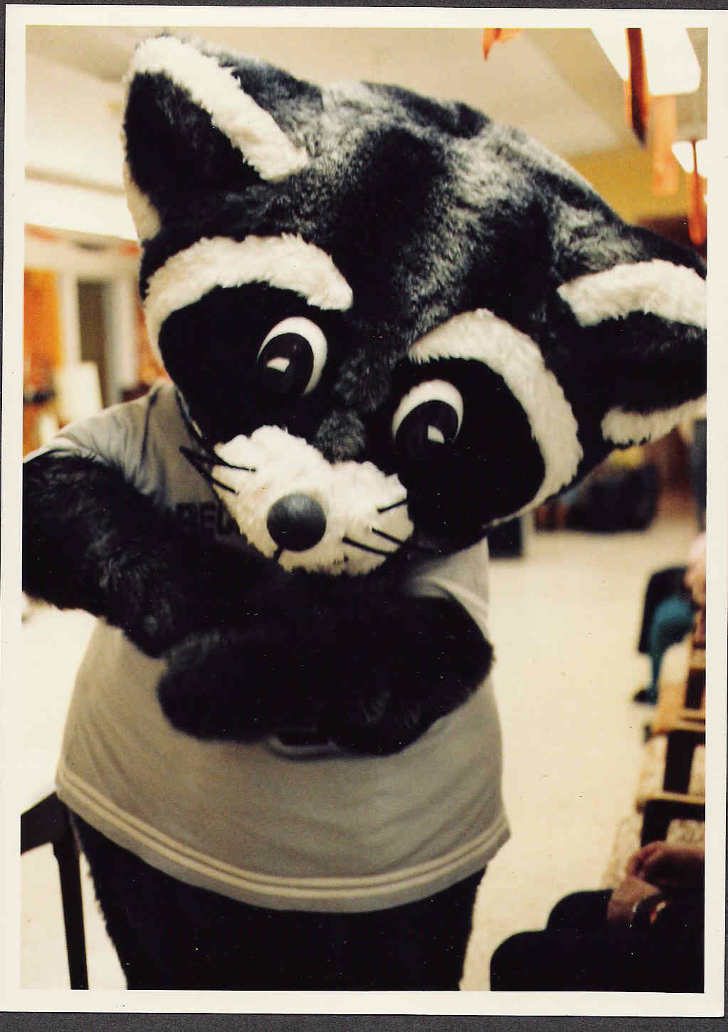 Recky Racoon
